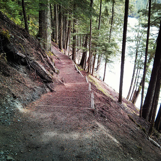 Part of the 1.5km trail in Nairn Falls Provincial Park, 20 minutes north of Whistler
