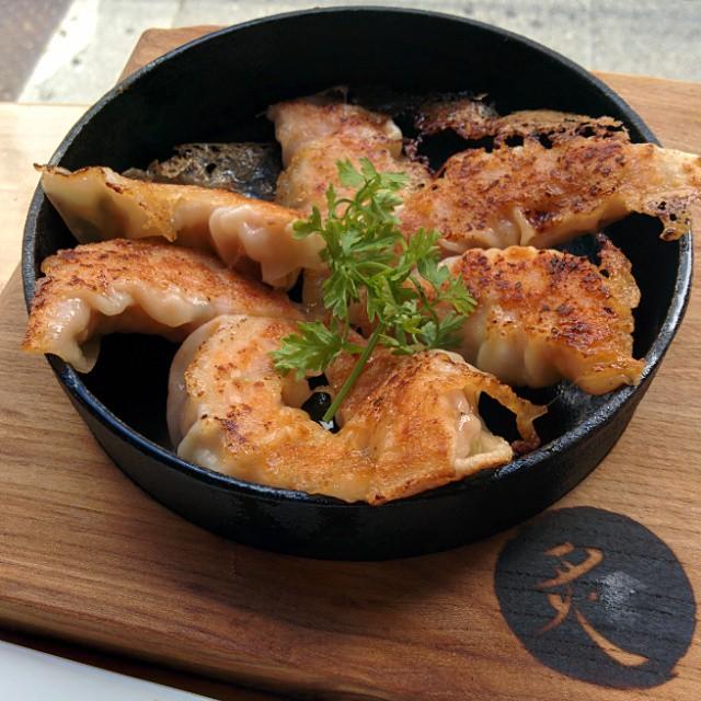 Pork Tepan Gyoza