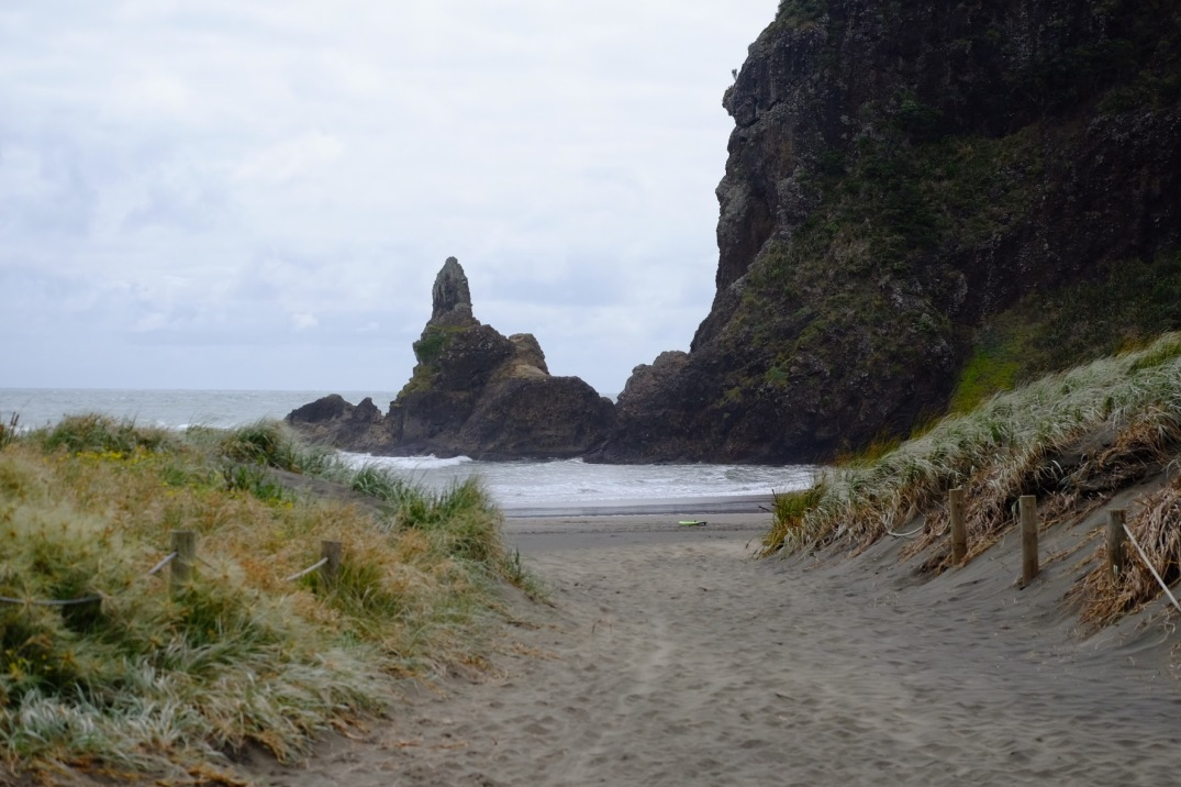 The black sands of Piha Beach