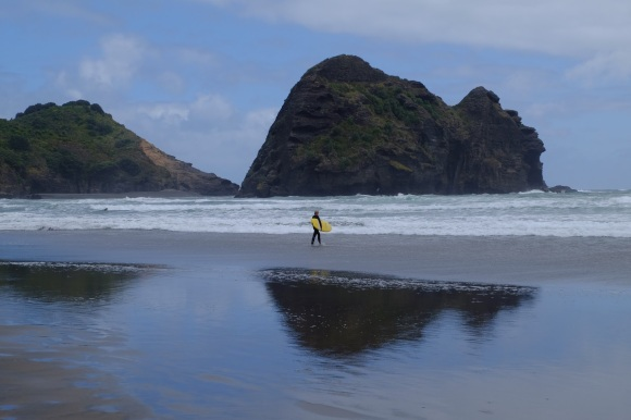 You can do Piha surfing tours too